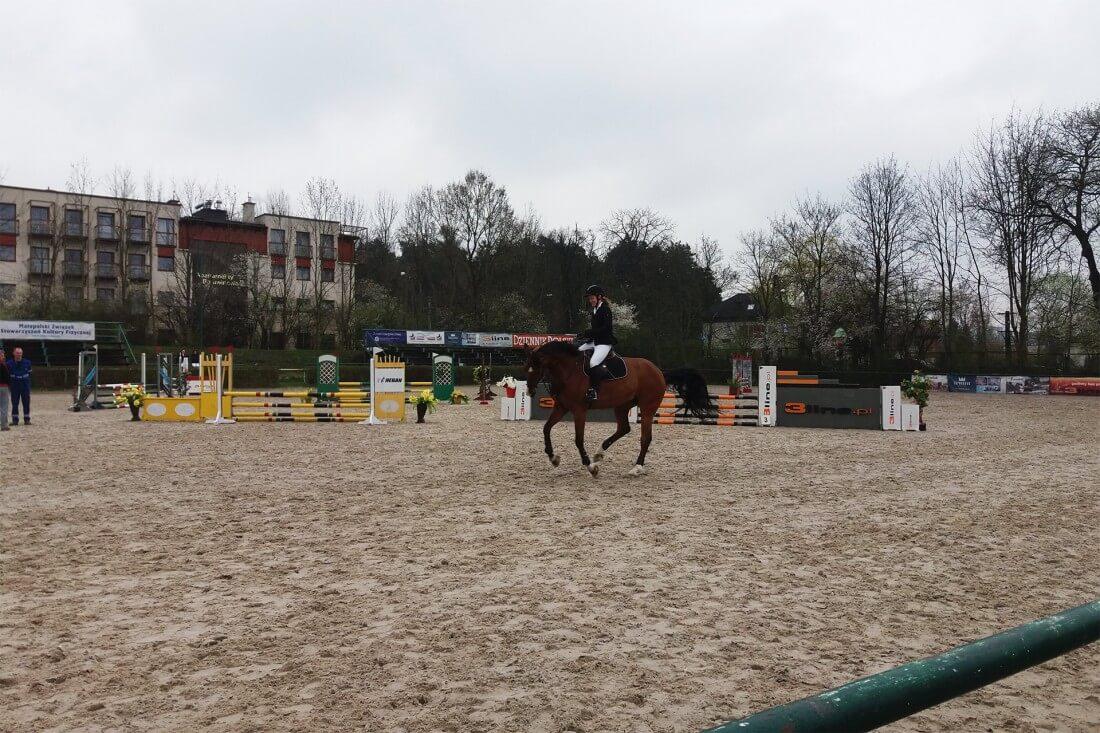 Zawody jeździeckie WLKS Krakus 2016 / fot. EĆ