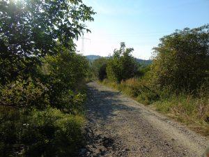 Via Regia od strony Wieliczki