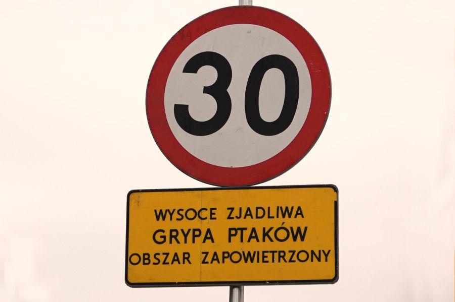 fot. telewizja Kraków