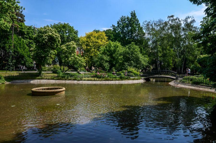 Konsultacje o rozwoju zieleni w Krakowie