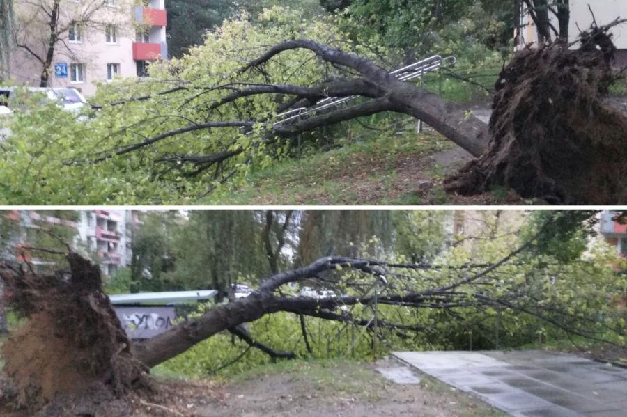 Orkan Ksawery nad Krakowem