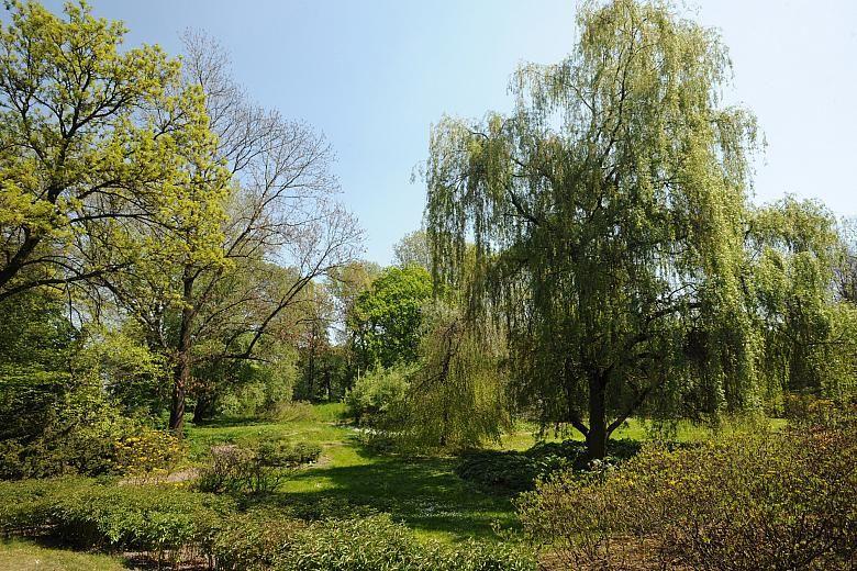 Miasto kupuje hektary, więc będzie zielono / fot. Wiesław Majka KrakowPL