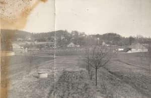 Swoszowickie pola / fot. archiwum prywatne Dominika Galasa
