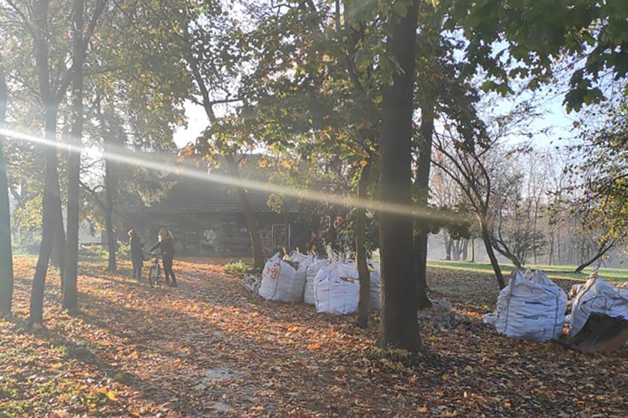 Petycja Park Zdrojowy w Swoszowicach